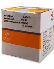 Novel Coronavirus(2019-nCoV) Nucleic Acid Diagnostic Kit(PCR-Fluorescence Probing)